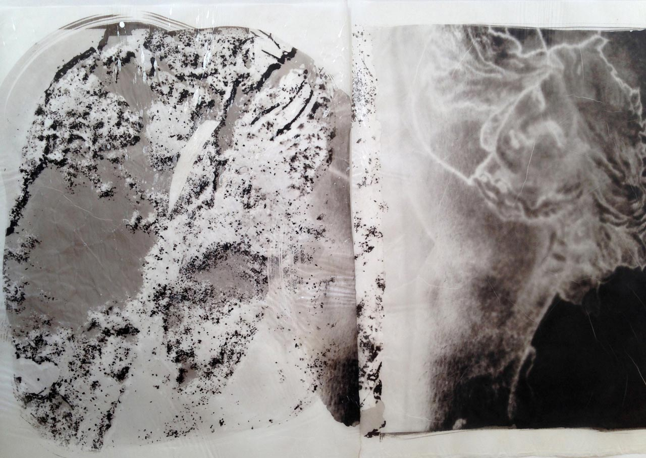 palladium print - abstract image by Alice Garik