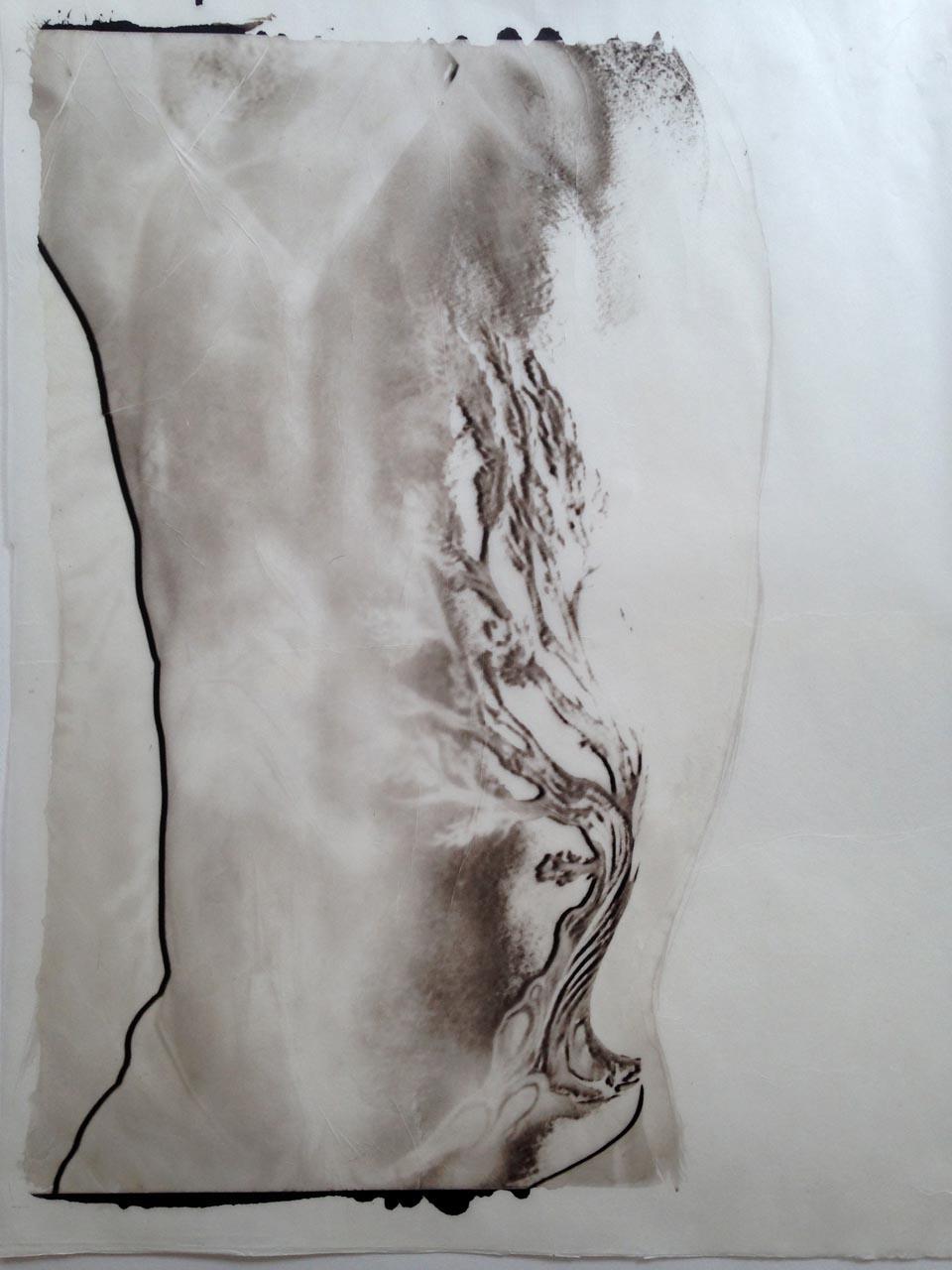 palladium print - abstract image of a man's torso with tree tattoo by Alice Garik