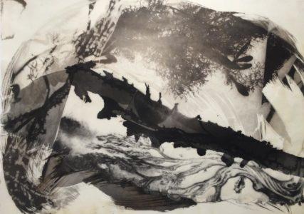 palladium print - abstract image of tree tattoo with seaweed by Alice Garik