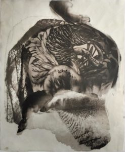 palladium print - abstract image of a bird tattoo with a snake and iris flower by Alice Garik