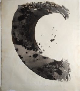palladium print - abstract image of seaweed in the shape of a wave by Alice Garik