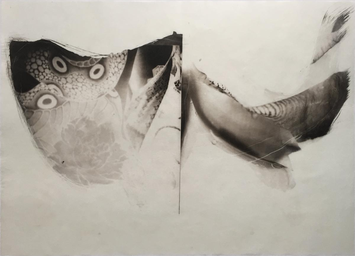 palladium print - abstract image of a tattoo and an iris in the shape of two valleys by Alice Garik