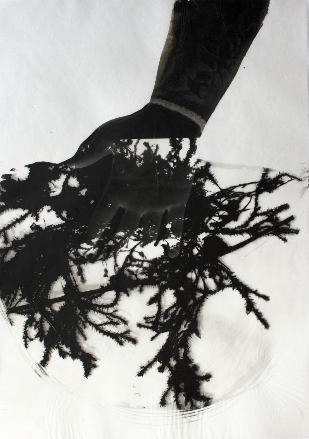 A man has his hand in moss in this graphically black and white print.
