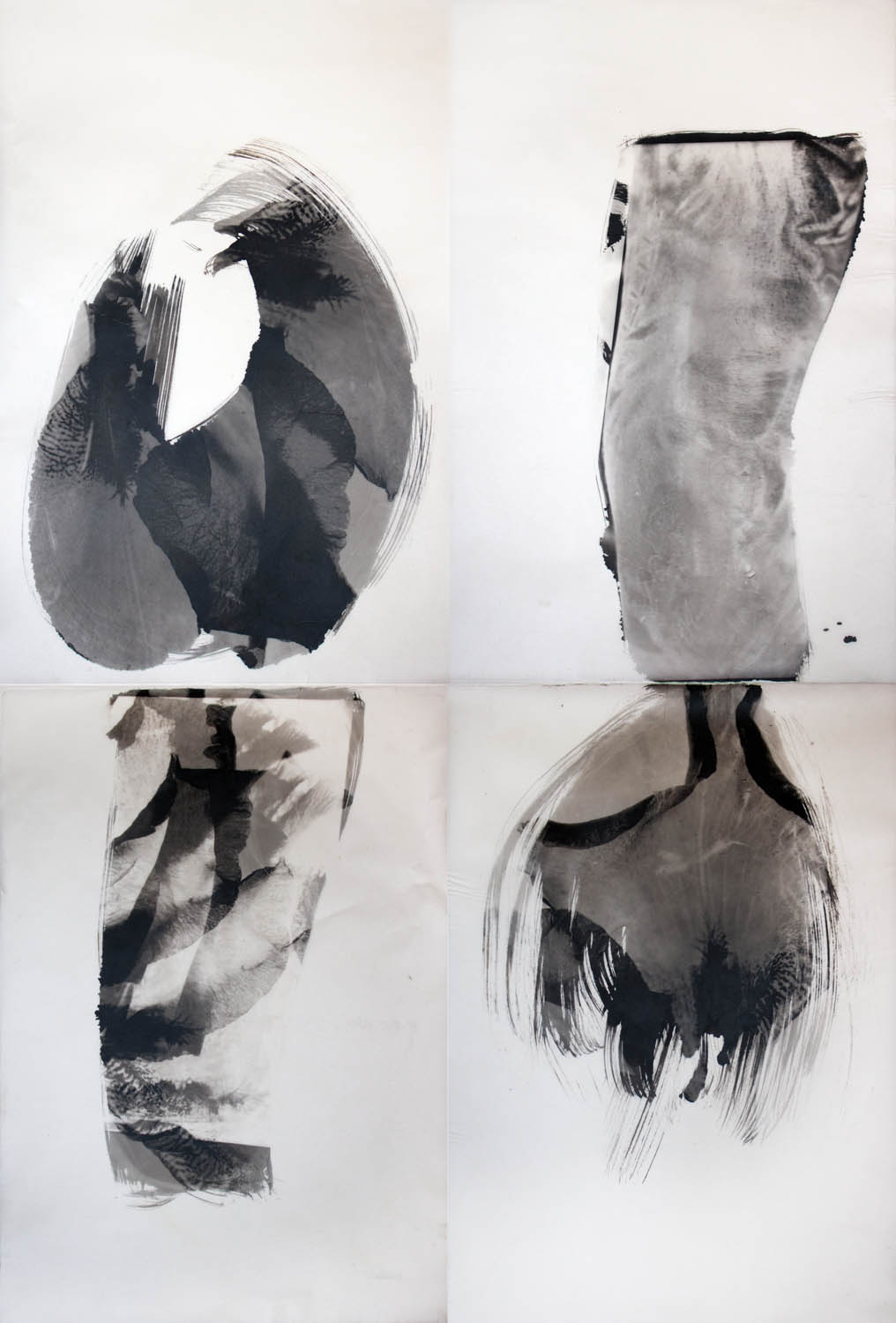 An abstract set of four images based on an Iris flower with one of the images being a man's tattooed arm.