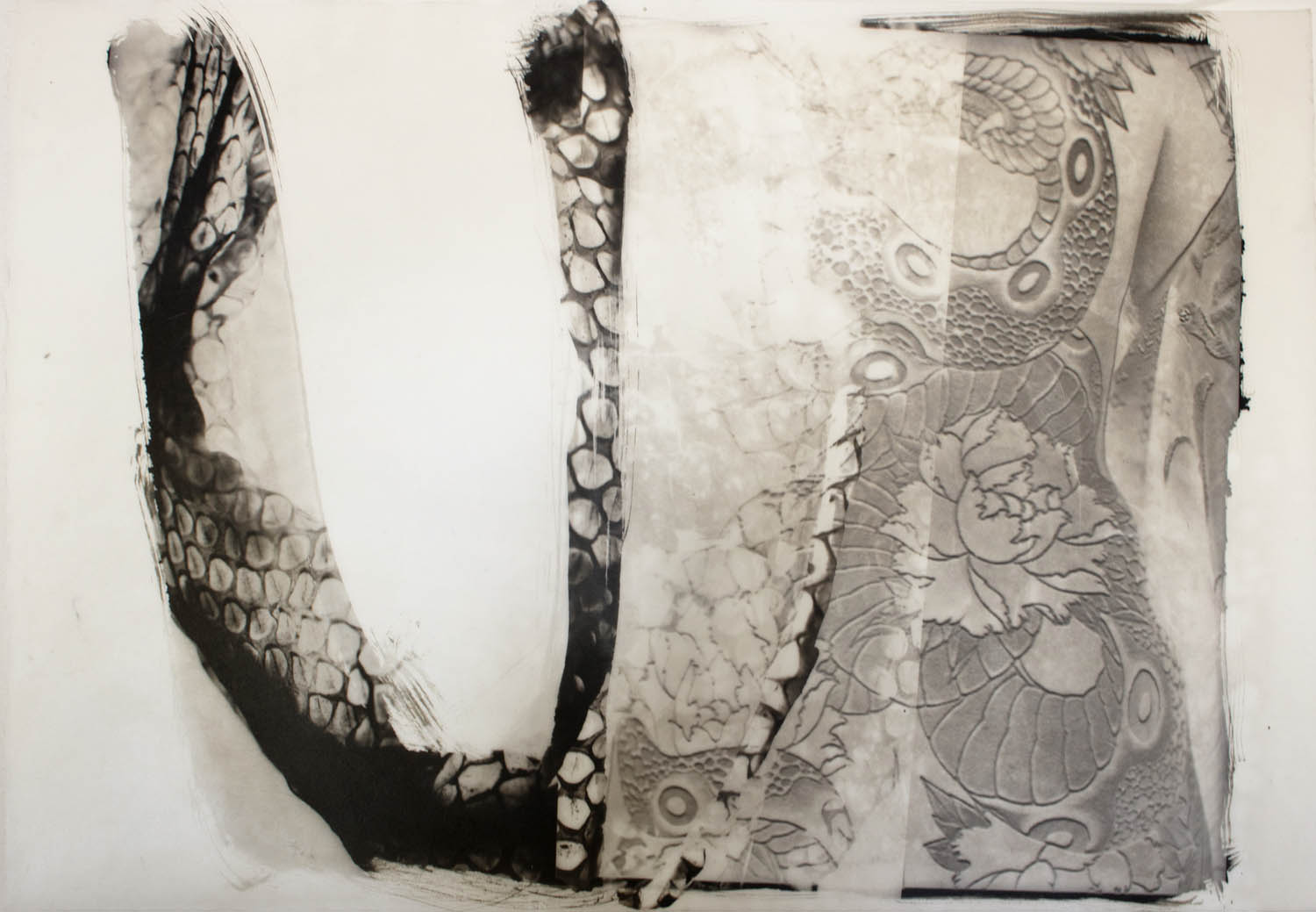 A shed snake skin with a woman who has a serpent tattoo on her back.