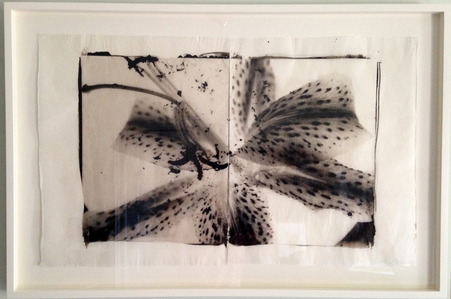 A diptych of a lily, framed and ready for sale.